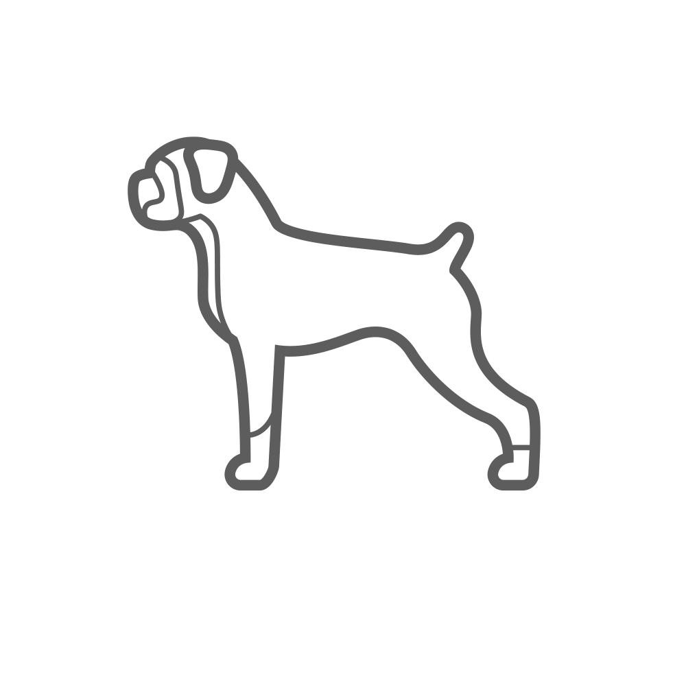 large-dog-sm